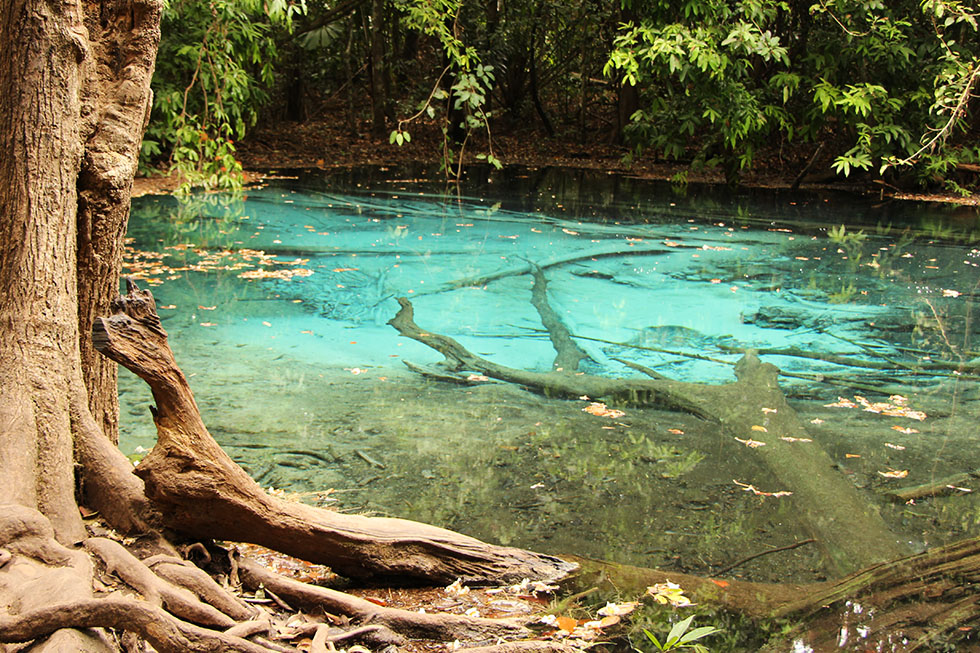 Emerald Pool & Blue Pool Krabi: Swimming in the outdoors