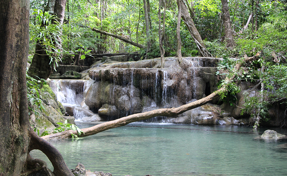 The Erawan Falls: Swimming Among the Fishes