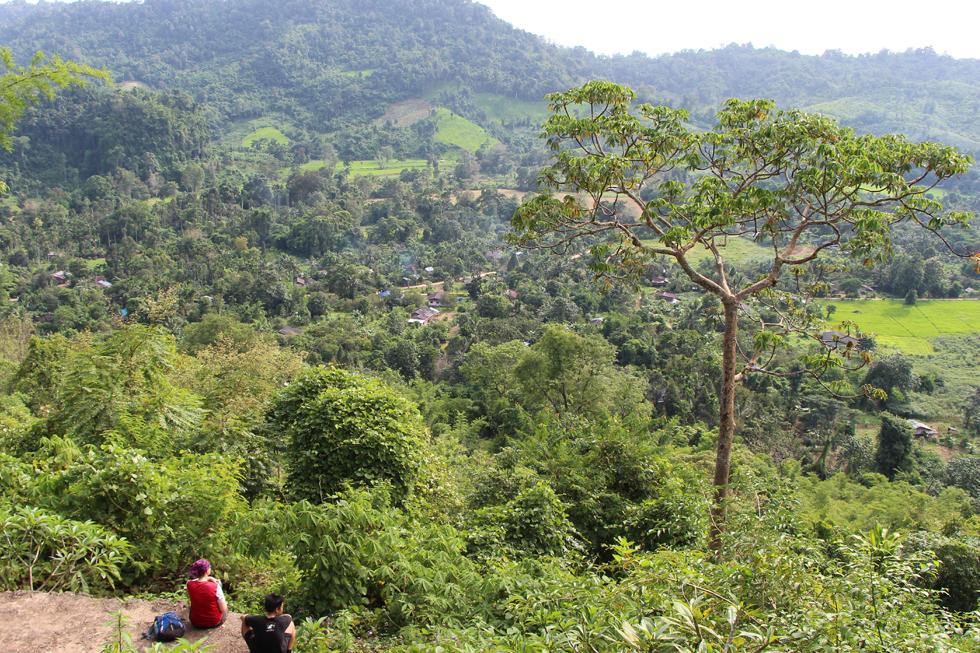 A 3 Day Trek Through the Jungle of Thung Yai