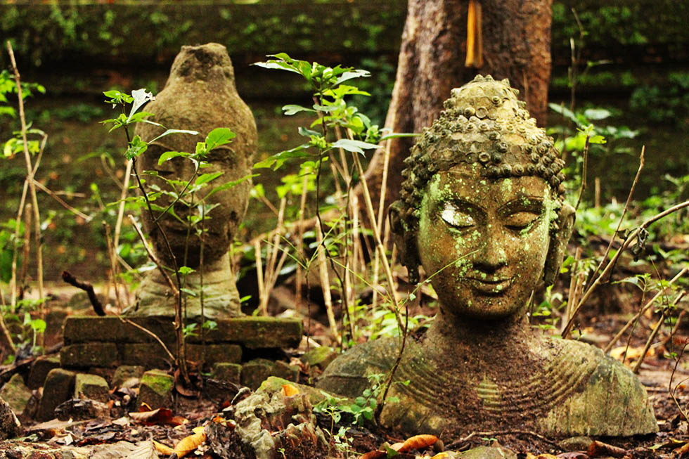 Wat Umong: a Magical Jungle Temple in Chiang Mai